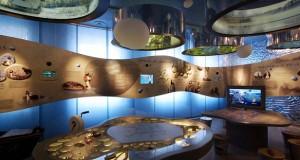 Pažintis su Aukštaitijos parkais ir gastronominėmis regiono tradicijomis