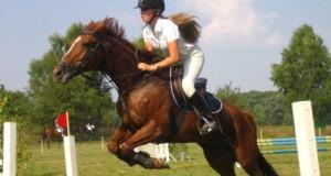 Kaip tapti žirgo draugu ir siekti sporto aukštumų