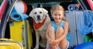 Ką svarbu žinoti norint keliauti su gyvūnu?