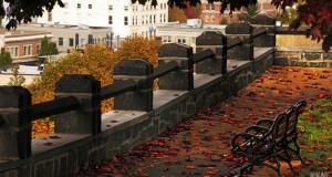 Auga tyliųjų miesto zonų poreikis