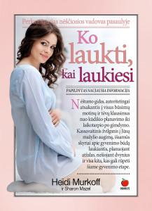 Ko_laukti_kai_laukiesi_virselis_2D_1400
