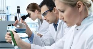 Vilniaus universiteto mokslininkai su šveicarais gilinsis į smegenų veiklą