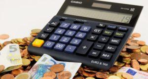 Sužinokite, kam šiemet valstybė išleis jūsų mokesčius