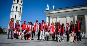 Turizmo savanoriais Vilniuje panoro tapti rekordinis skaičius žmonių