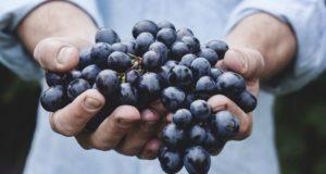 Sveikatos apsaugos ministras ragina maisto gamintojus labiau rūpintis žmonių sveikata
