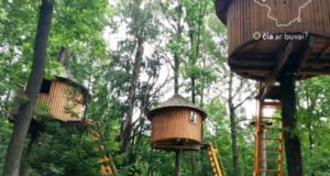 10 įdomiausių kelionių po Lietuvą šeimoms