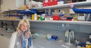 Vilniaus universiteto mokslininkai siekia rasti efektyvų leukemijos gydymo būdą