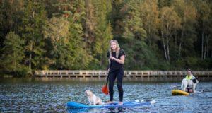 Naujausia pramoga – su šunimis ant irklenčių