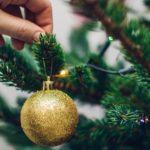 Kaip išsirinkti tinkamiausią kalėdinę eglutę?