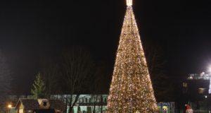Druskininkuose suspindo didžioji Kalėdų eglė ir įspūdingas eglučių parkas