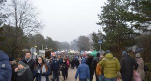 Palanga ruošiasi vienam žymiausių žiemos renginių Lietuvoje