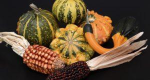 Kaip lietuviškoje žemėje auga egzotinės daržovių veislės?