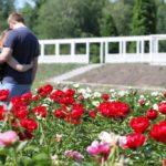 Kauno botanikos sodas jau kviečia grožėtis prašmatniais bijūnų žiedais
